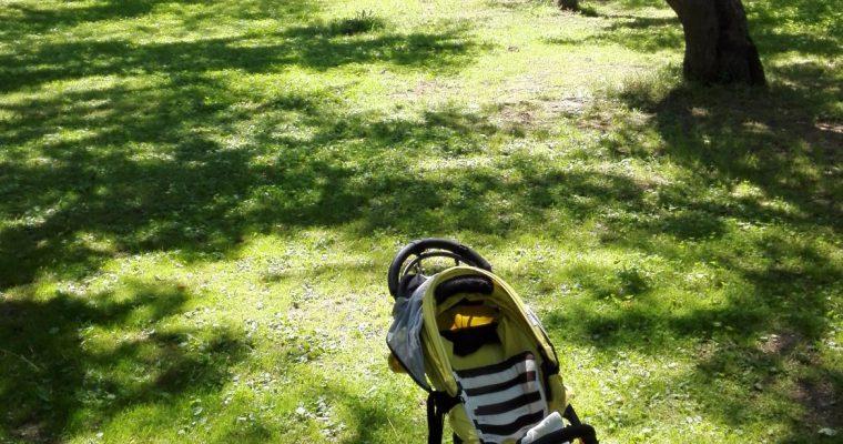 【高山市の子供とおでかけ】一緒に国府町の桜野公園へ♪春は桜もおすすめスポット