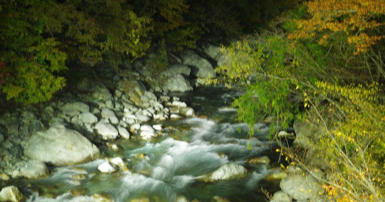 新穂高の紅葉ライトアップ~夜空を楽しむ会~川と夜空と紅葉と〇〇の綺麗なハーモニー