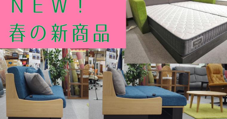 【新商品】新しいライフスタイル提案~子供と寝るのにおススメベッド & くつろぎ3WAYソファベッド